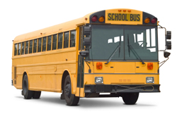 bus-international-school-bus.jpg